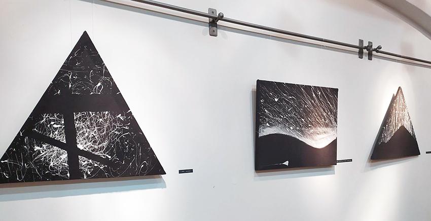Тематична виставка Валер'яна Федоряка «12 каменів саду Гендзюцу»