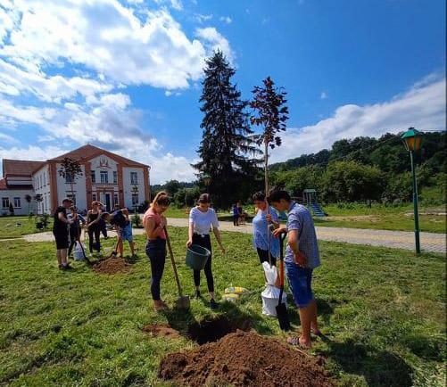 Акція із висадки алеї декоративних дерев випускниками 2020 року